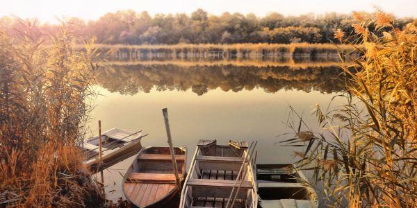 Szelidi - tó